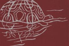 Zeichen-auf-einer-Schildkroete-Linolschnitt-15-x-21-cm-2014